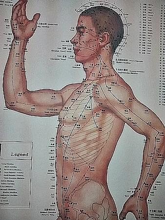 השילוב בין רפואה סינית לנטורופתיה