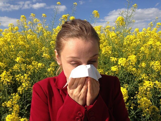 טיפול באלרגיות באמצעות צמחי מרפא ותמציות פרחי באך