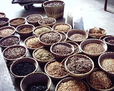 צמחי מרפא סיניים לטיפול בסרטן ריאה